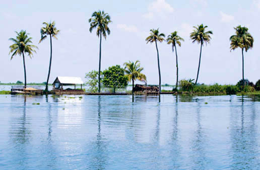 Alappuzha Backwaters Tourism