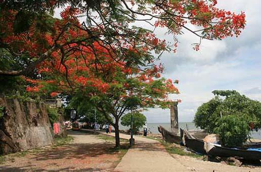 Cochi sea beach, Kerala