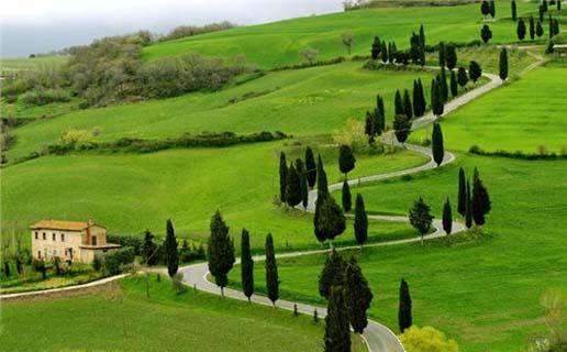 Green Garden Ooty