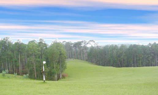 Ranikhet Hill Station, Golf Course