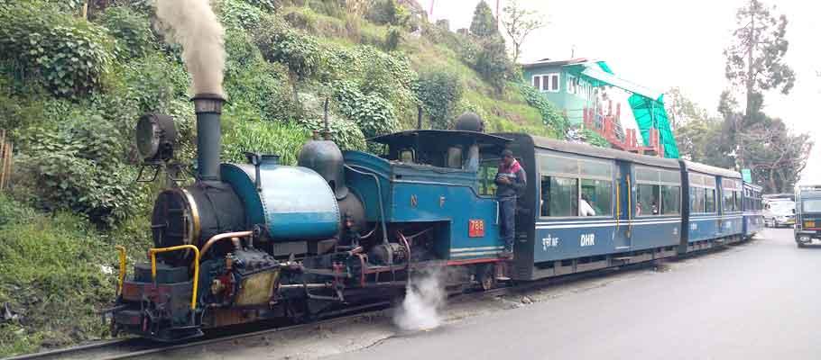 toy train in darjeeling, west bengal
