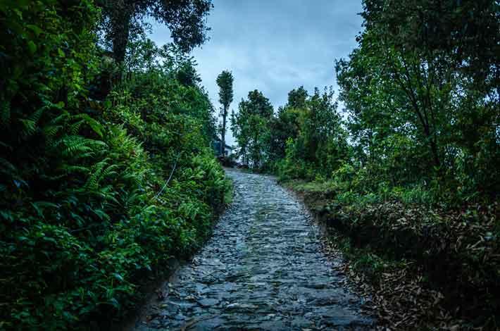 village path in rishop or rishyap